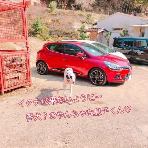 那珂川町のフジノ香花園